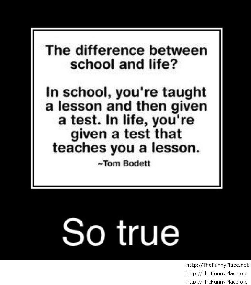 School Quote Funny  Funny school quotes and sayings – TheFunnyPlace