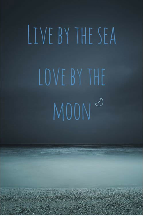 Sea Love Quote  Ocean Summer and Beach Quotes