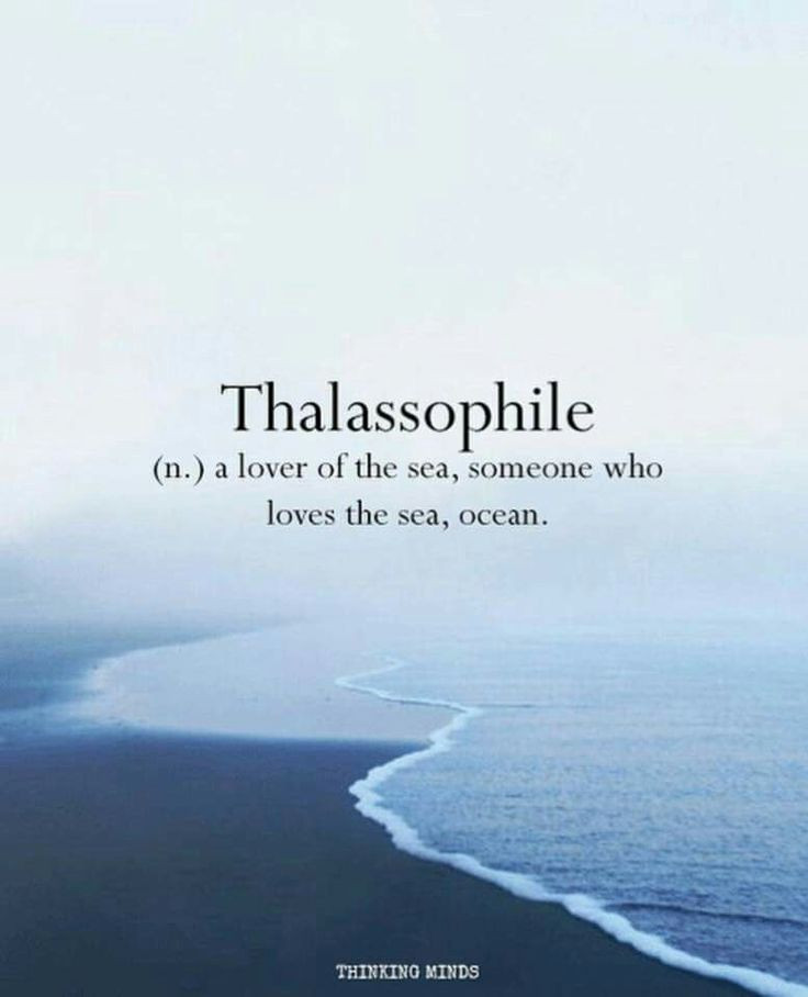 Sea Love Quote  Best 25 Sea quotes ideas on Pinterest