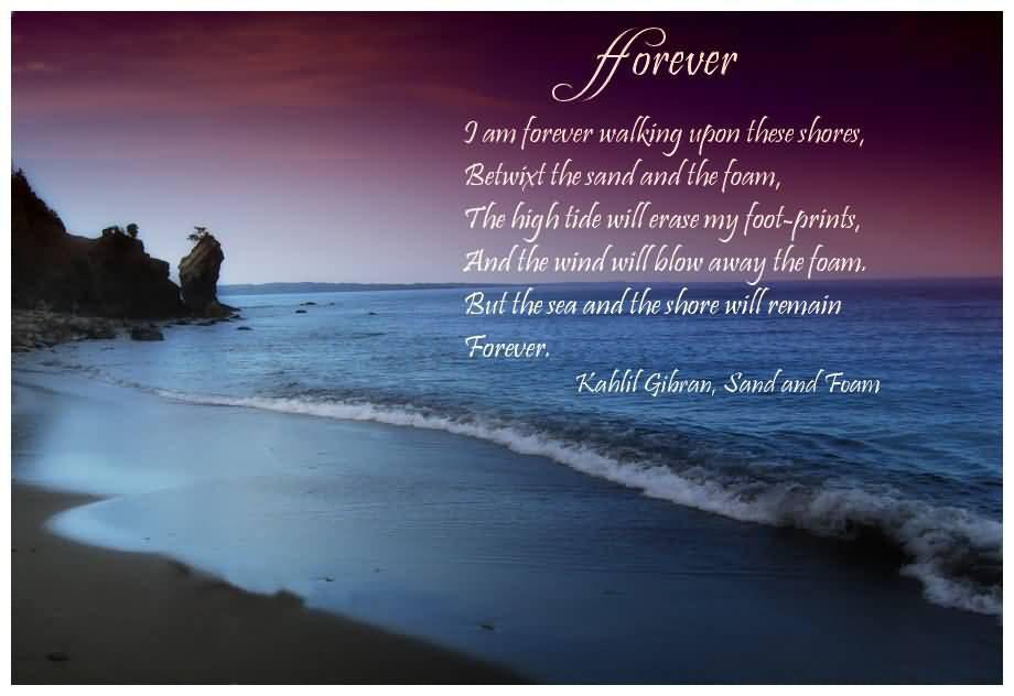 Sea Love Quote  Under The Sea Love Quotes QuotesGram