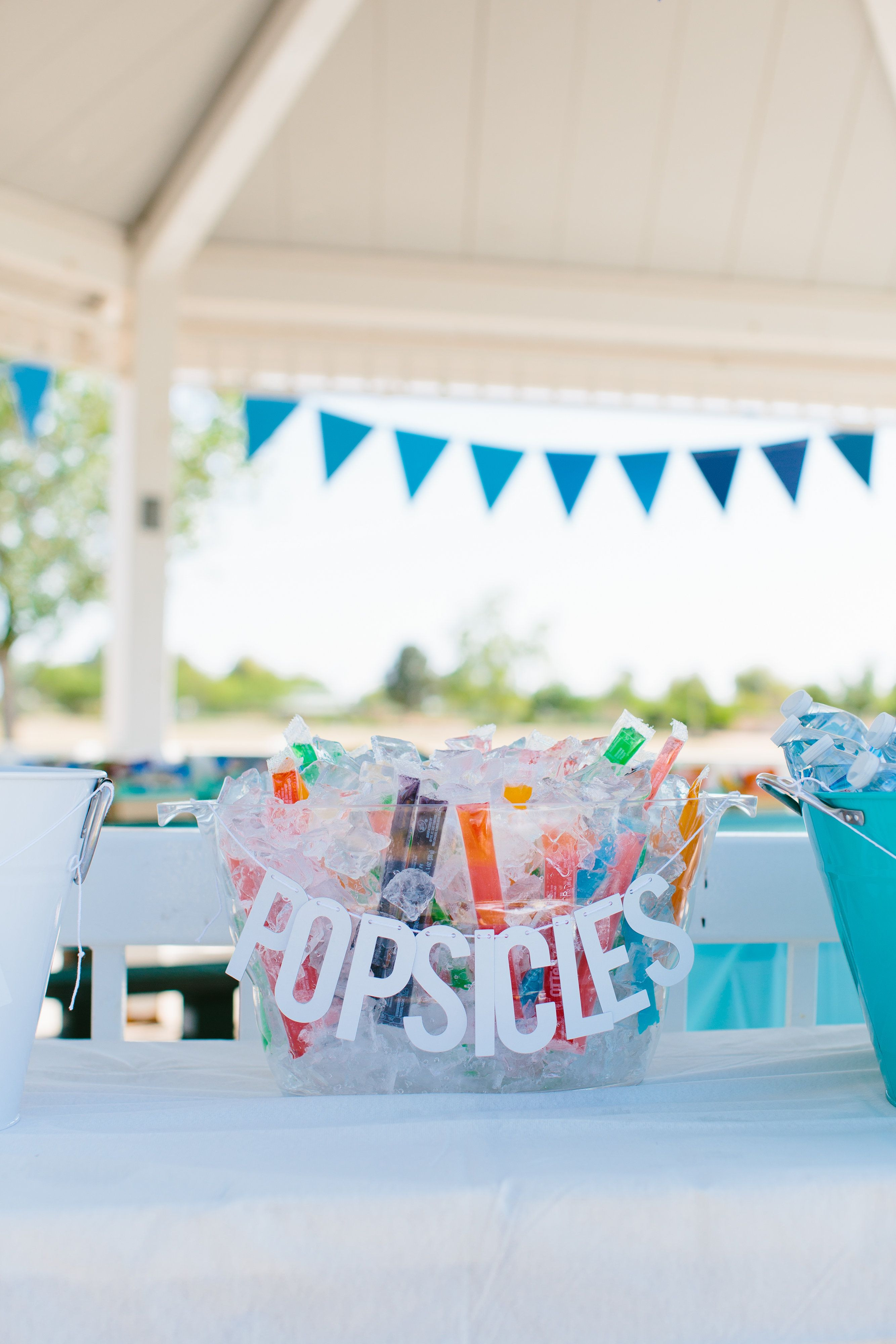 Summer Birthday Party Ideas For 4 Year Old Boy  A First Birthday Picnic in the Park