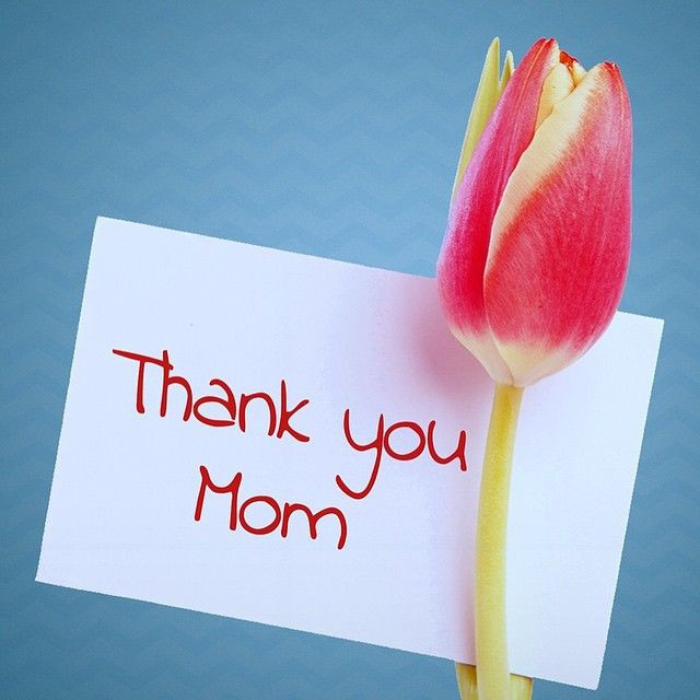 Thank You Mother Quotes  Thank You Mom s and for