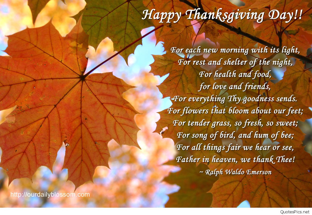 Thanksgiving 2017 Quotes  Happy thanksgiving 2016 2017 sayings wallpaper hd