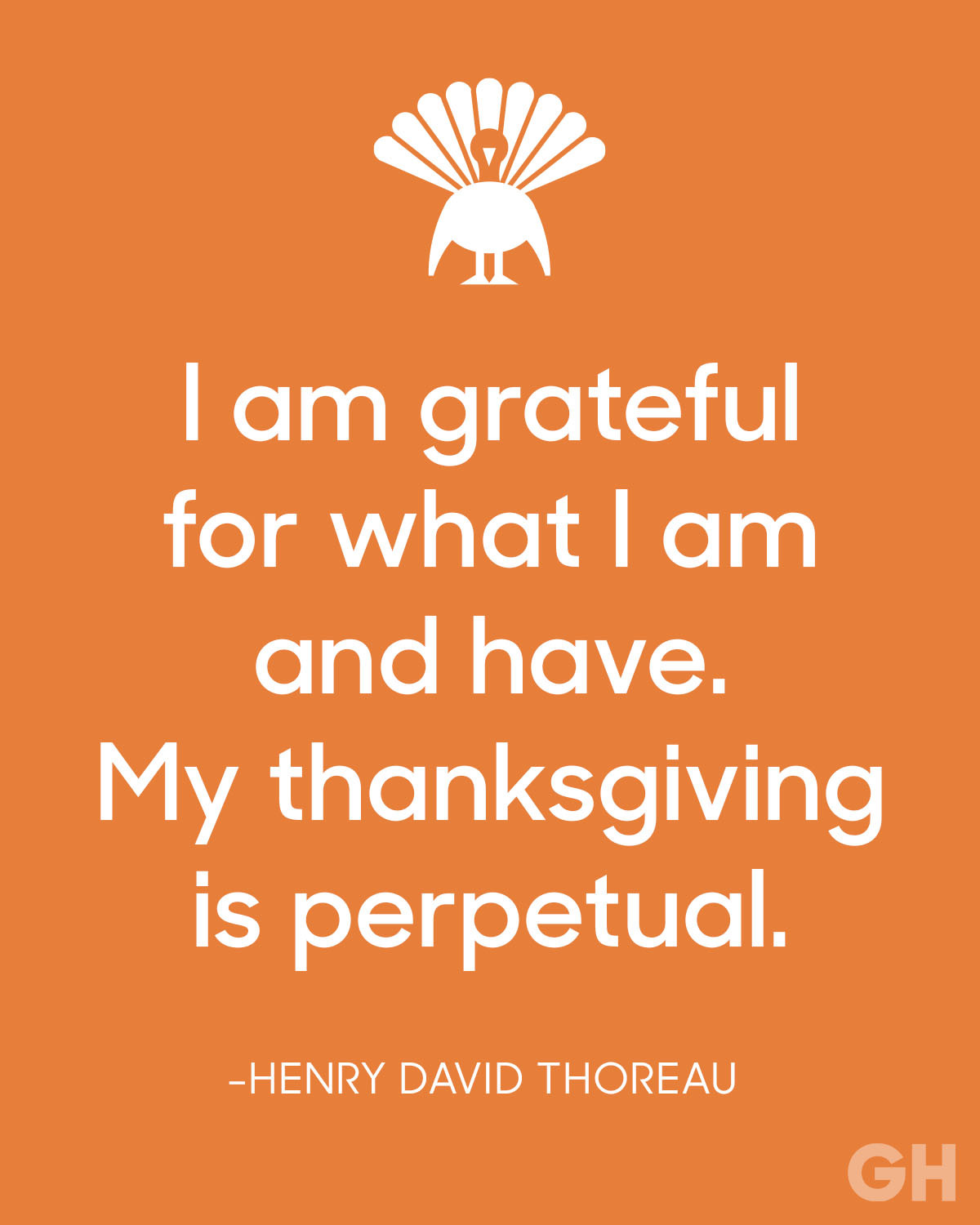 Thanksgiving Quotes  Happy Thanksgiving 2016 Page 2