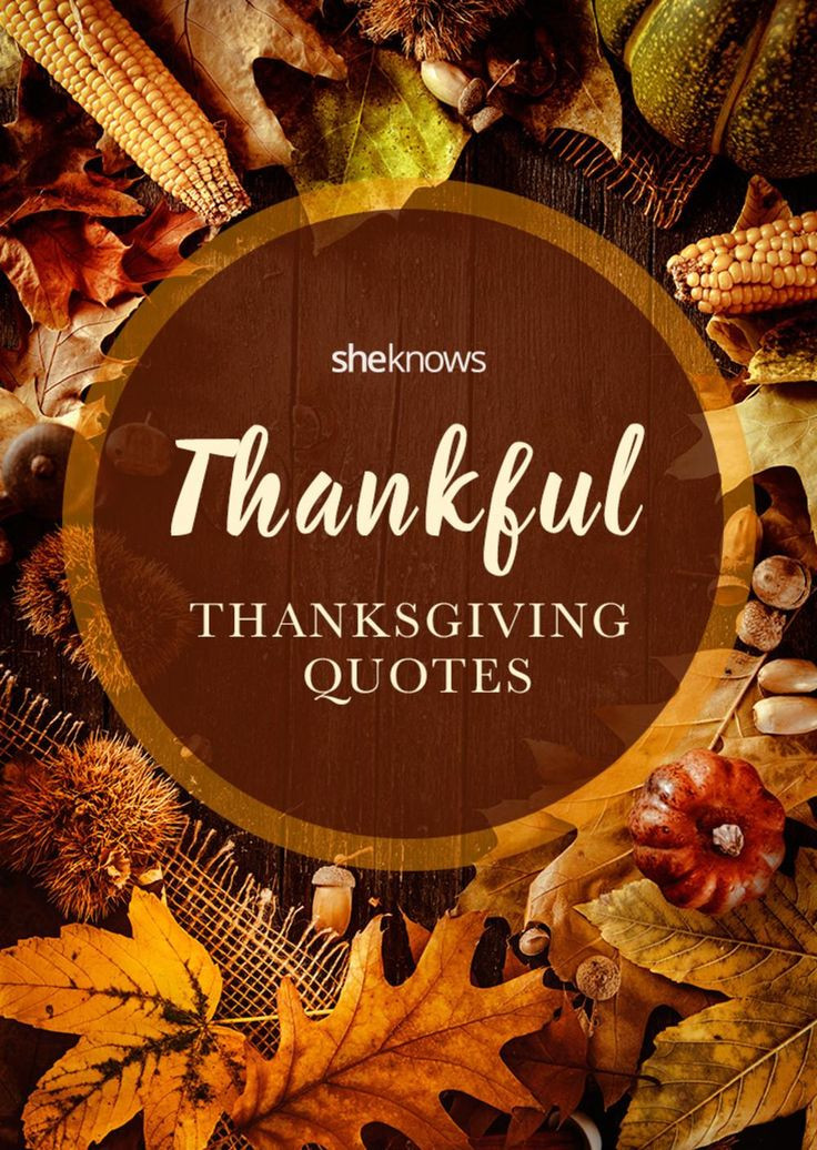Thanksgiving Quotes  Thankful quotes for Thanksgiving