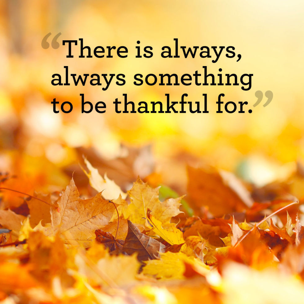 Thanksgiving Quotes  Thanksgiving Quotes And Sayings