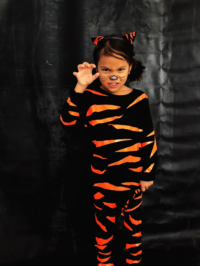 Tiger Costume DIY  DIY