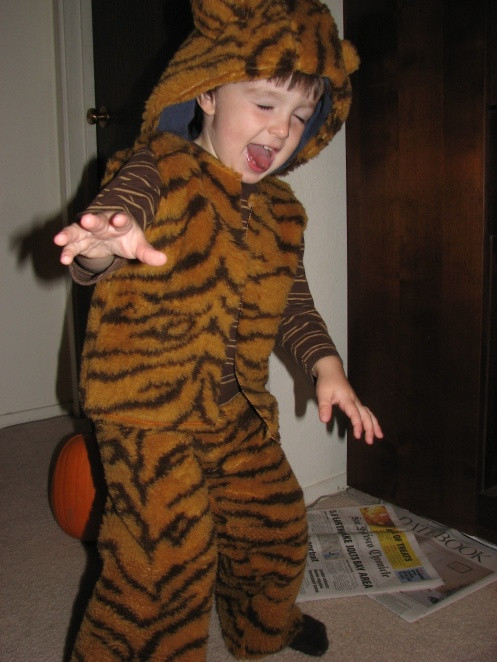 Tiger Costume DIY  80 best images about tigers on Pinterest