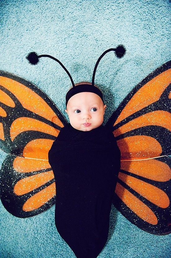 Toddler DIY Costumes  Baby Halloween Costumes The Idea Room