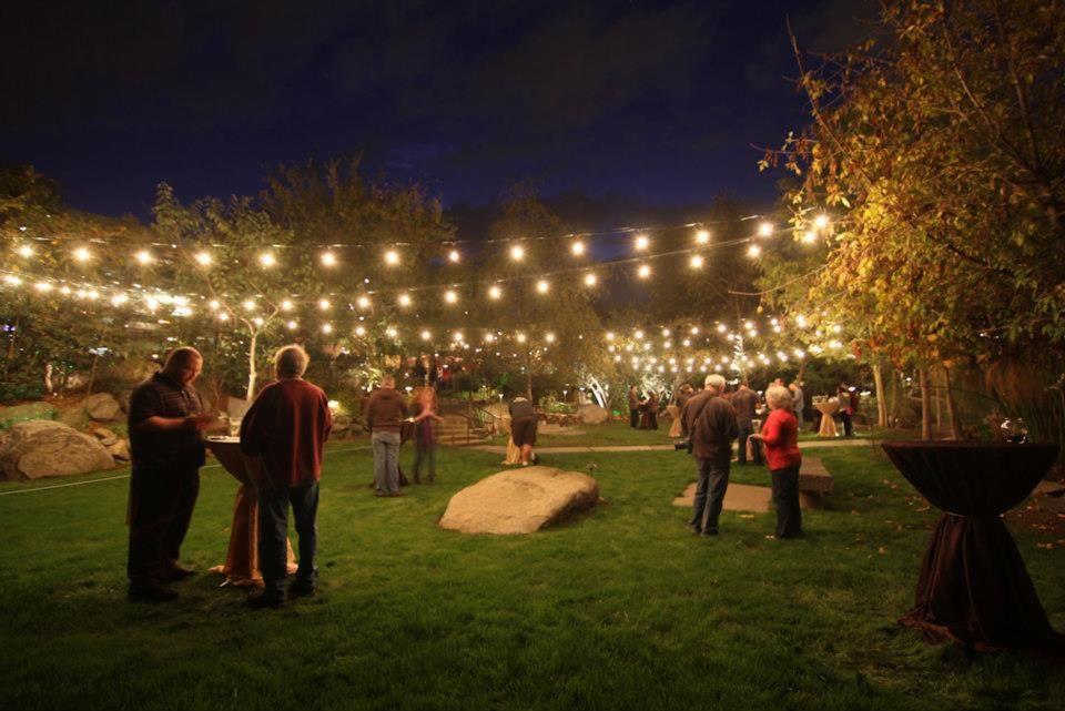 Backyard Party Ideas Lighting  Stone Brewery party Backyard party idea