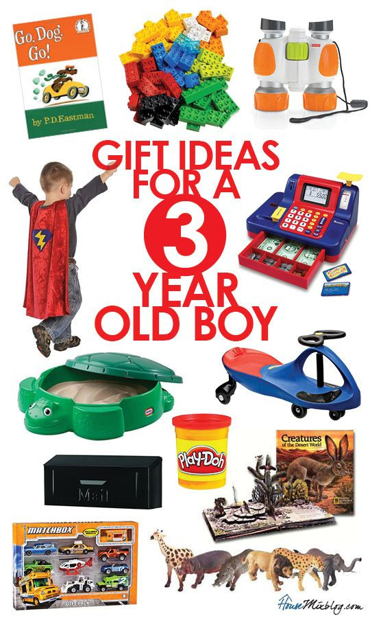 Birthday Gifts For 3 Yr Old Girl  Best 25 3 year old birthday t ideas on Pinterest