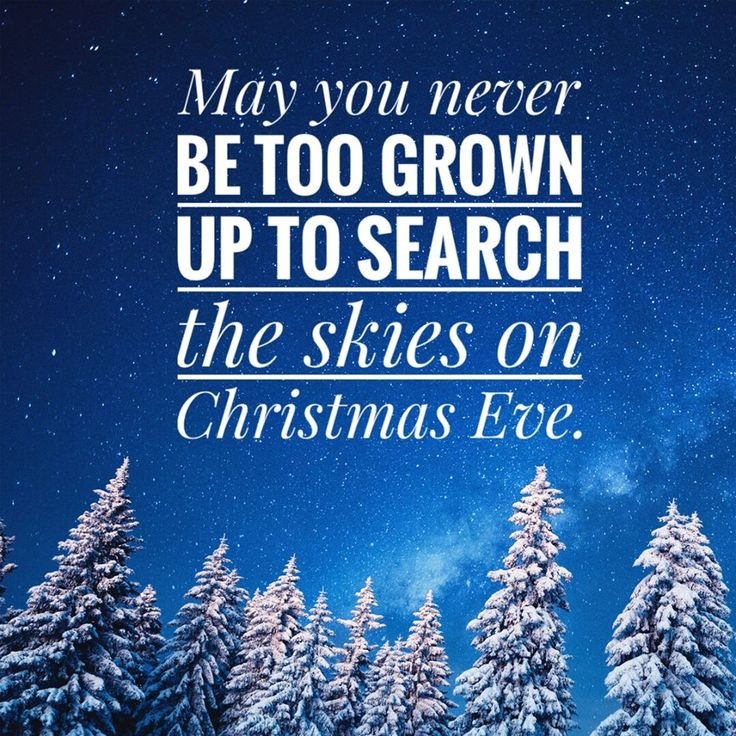 Christmas Eve Quotes  May you never be too grown up to search the skies on
