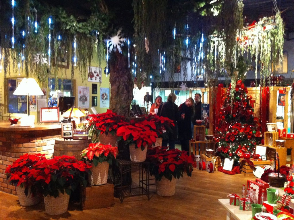Christmas Flower Delivery  Shop Small in Downtown Sanford FL Support Local This