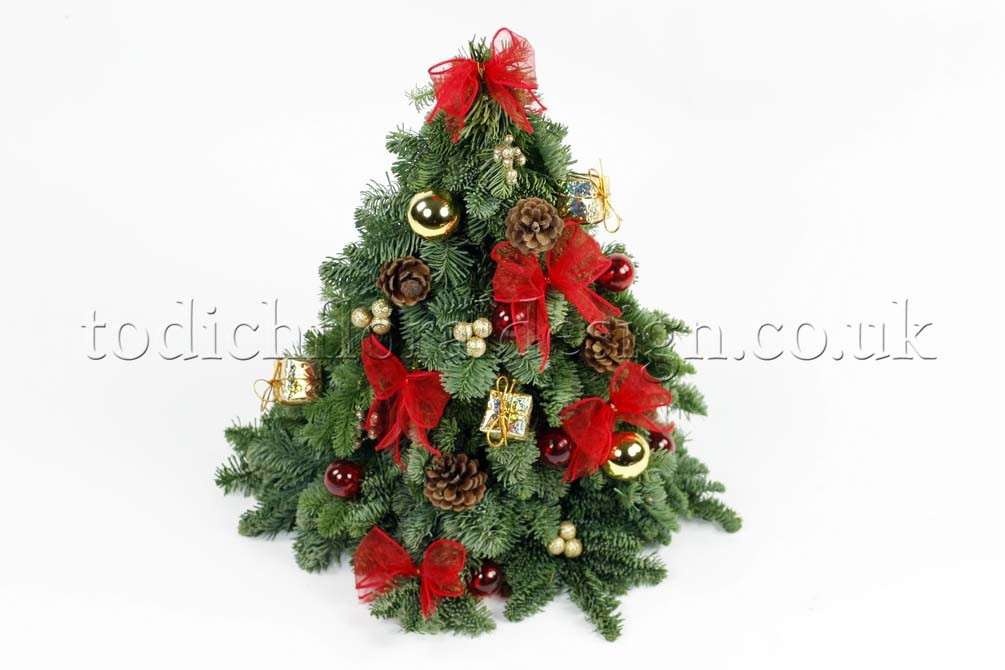 Christmas Flower Delivery  Find Your Last Minute Holiday Gifts Christmas Flower