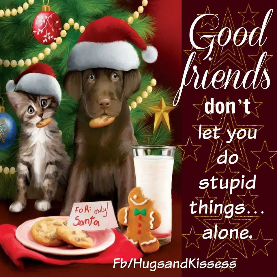 Christmas Friend Quotes  Cute Christmas Quotes About Friendship s