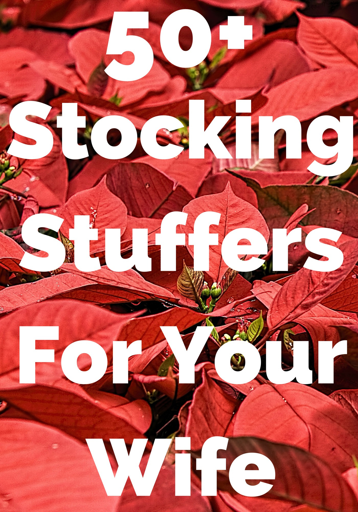 Christmas Gift Ideas For Your Wife  Best 50 Stocking Stuffers for Your Wife