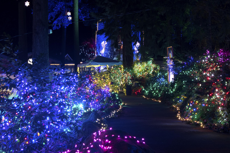 Christmas Lighting Videos  Christmas Festival of Lights