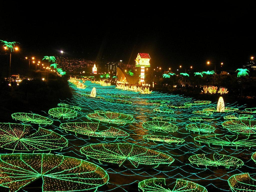 Christmas Lighting Videos  Christmas lights in Medelln