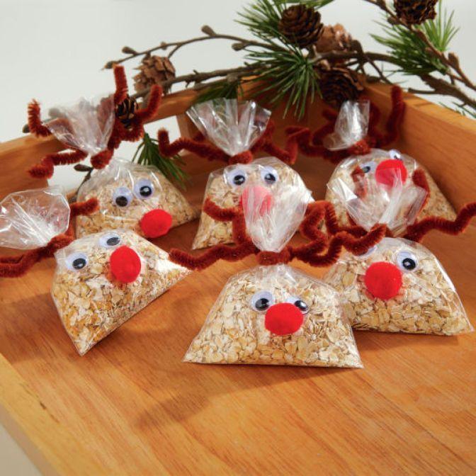 Craft Ideas For Christmas Gifts  DIY Reindeer Food for Christimas Eve