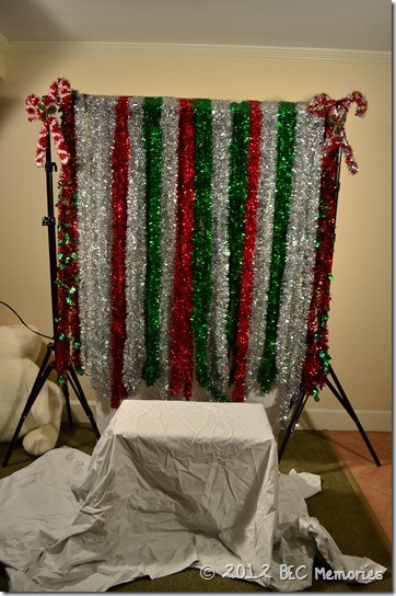 DIY Christmas Photography Backdrops  Christmas Party Pinterest Style