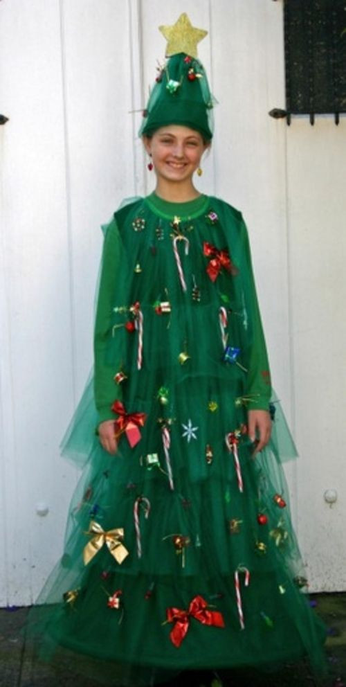 DIY Christmas Tree Costumes  Best 25 Christmas costumes ideas on Pinterest