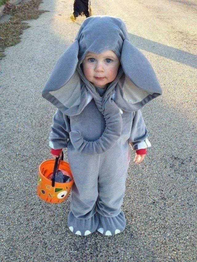 DIY Elephant Costume  Adorable Elephant Costume