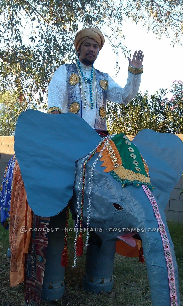 DIY Elephant Costume  233 best Halloween Costumes images on Pinterest