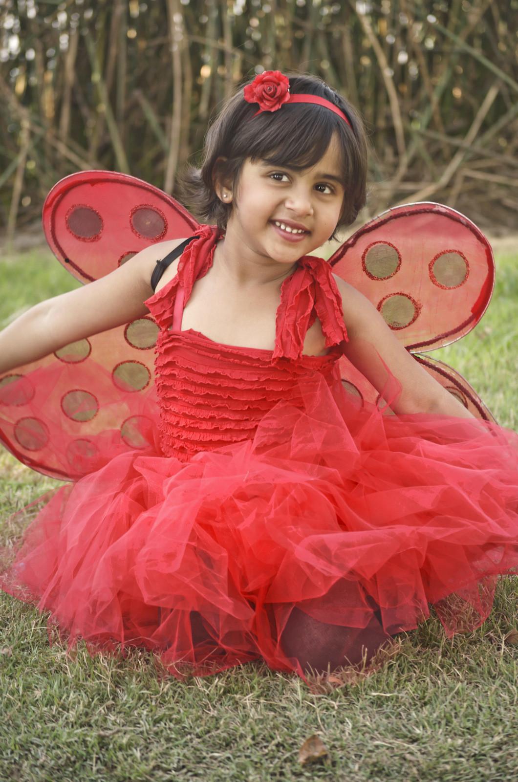 DIY Ladybug Costume  ladybug costume diy