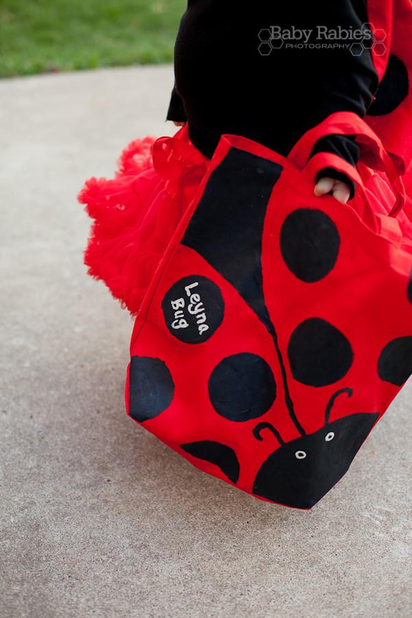 DIY Ladybug Costume  Easy DIY Halloween Costumes LEGO & Ladybug