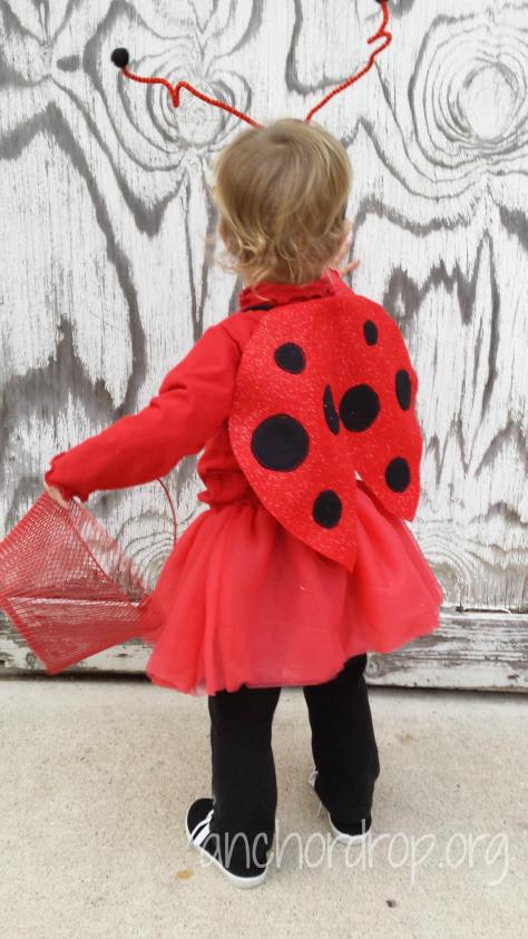 DIY Ladybug Costume  Ladybug Fly Away Home DIY Toddler Costume – Anchor Drop