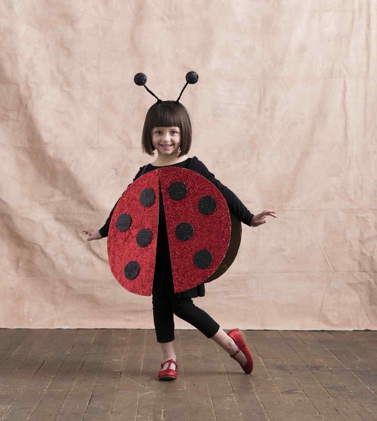 DIY Ladybug Costume  DIY Ladybug Costume