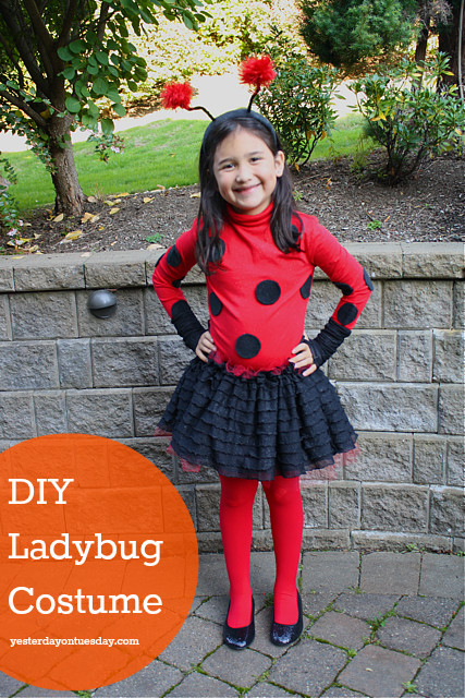 DIY Ladybug Costume  4 DIY Halloween Costumes