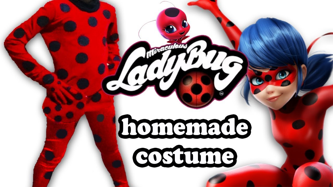 DIY Ladybug Costume  DIY Homemade costume Ladybug Ecobrisa DIY