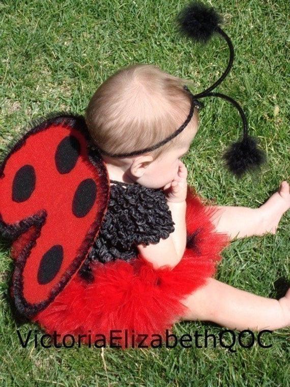 DIY Ladybug Costume  DIY Ladybug Costume Kit No Sew Infant by victoriaelizabethqoc