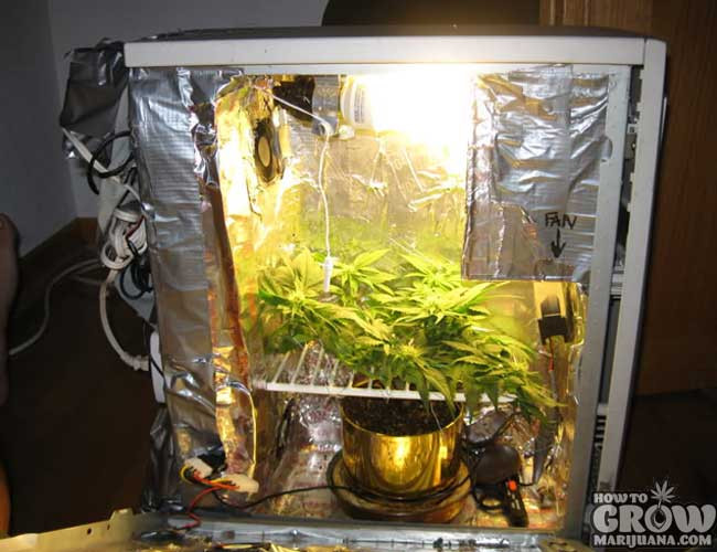 DIY Weed Grow Box  PC Grow Box Review