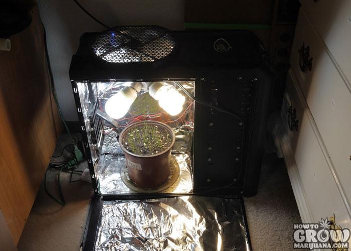 DIY Weed Grow Box  Tips to be ing the MacGyver of DIY Marijuana Grow Boxes