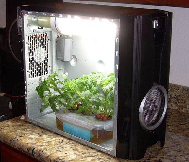 DIY Weed Grow Box  How to Build a Simple Grow Box