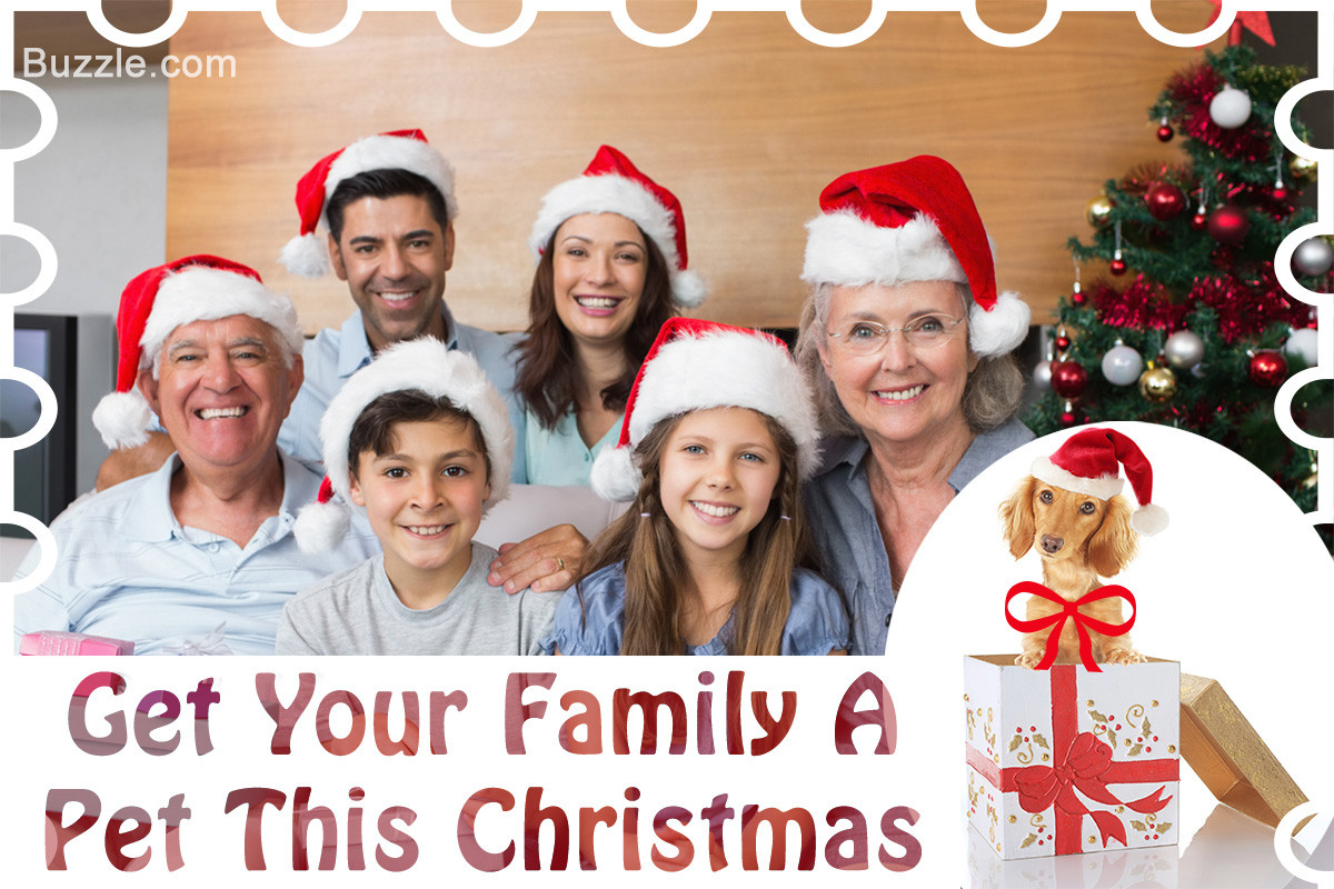 Family Christmas Gift Ideas  5 Whole Family Christmas Gift Ideas to Spark Smiles All Around