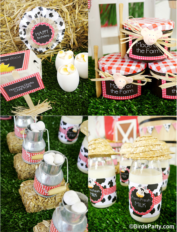 Farm Birthday Party Decorations  My Kids Joint Barnyard Farm Birthday Party Party Ideas