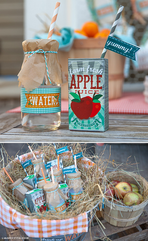 Farm Birthday Party Decorations  DIY Kid s Farm Party Food & Drinks