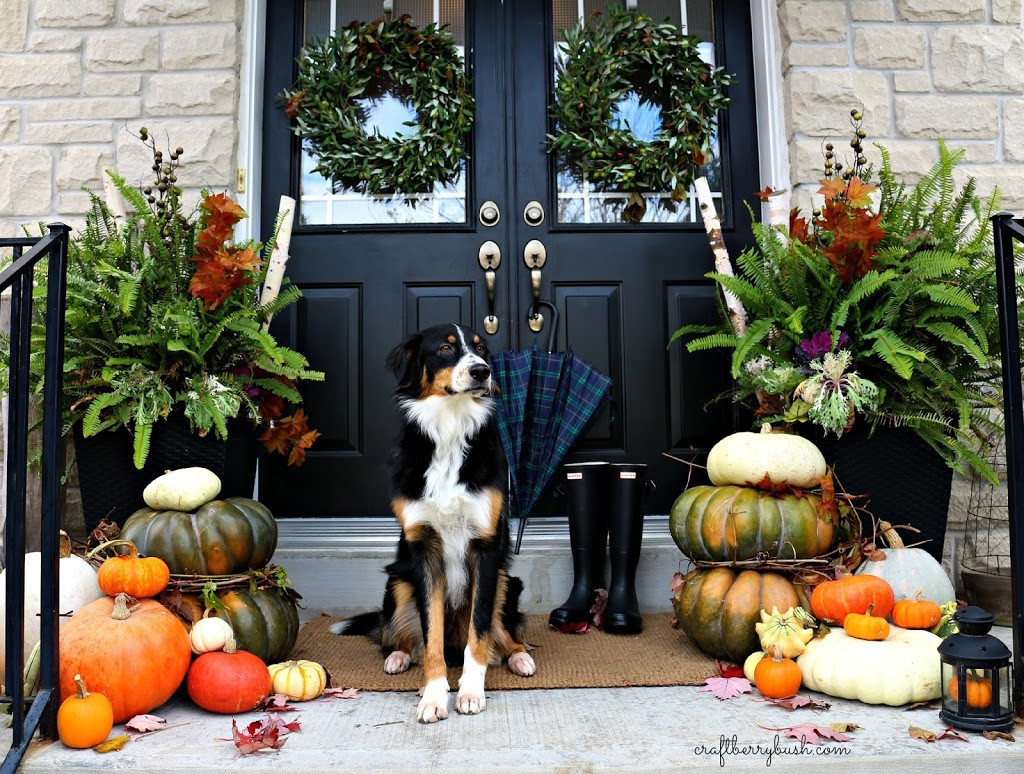 Front Porch Fall Decorating Pictures  Fall Porch 2014