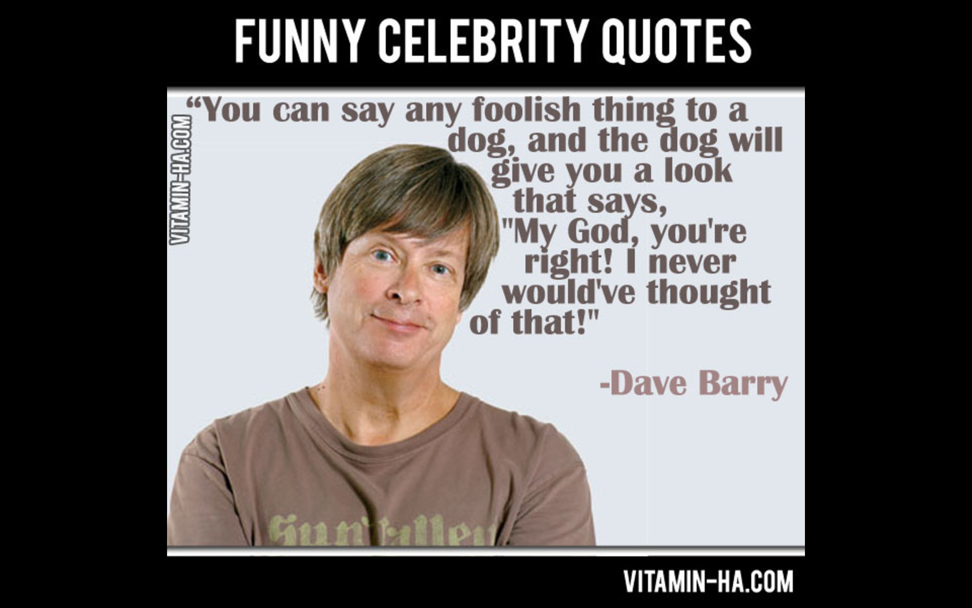 Funny Celebrity Quotes  Funny Celebrity Quotes Wallpapers With QuotesGram