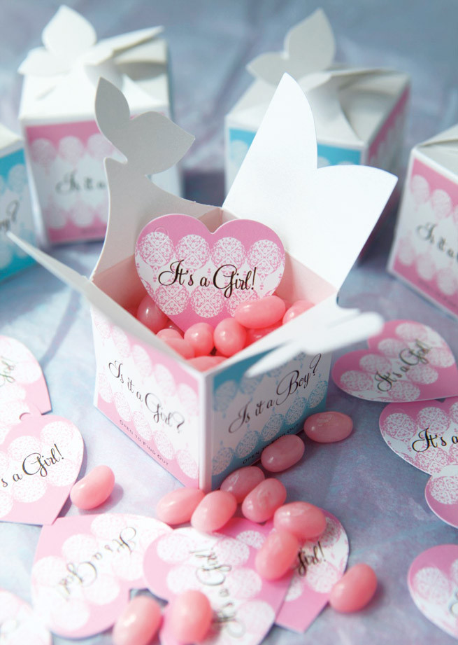 Gift Ideas For Baby Reveal Party  Baby Gender Reveal Gifts