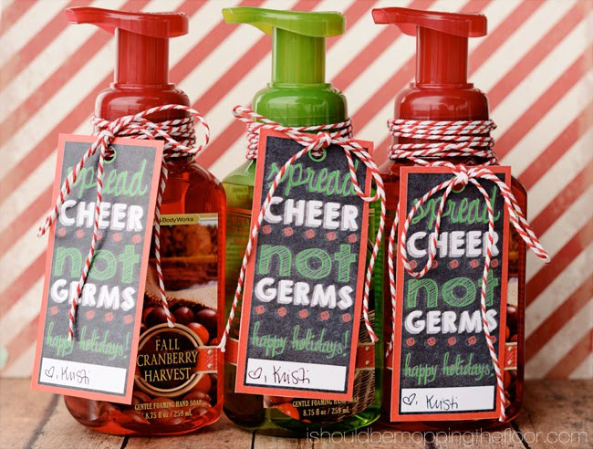 Gift Ideas For Coworkers Christmas  Christmas Soap Gift