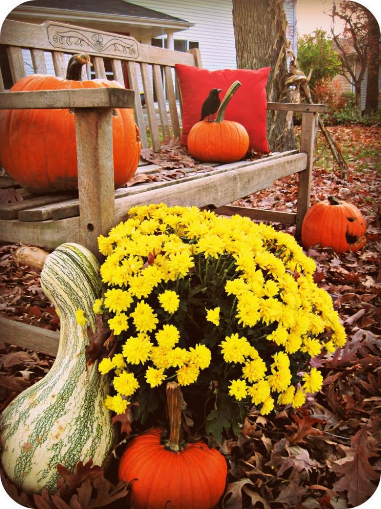 Halloween Decoration Outdoor  5 Last Minute Easy Halloween Outdoor Decorations