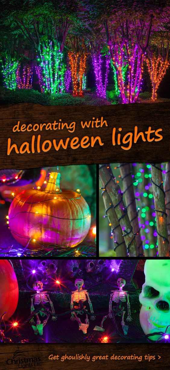 Halloween Porch Light  Tree forest String lights and Halloween decorations on