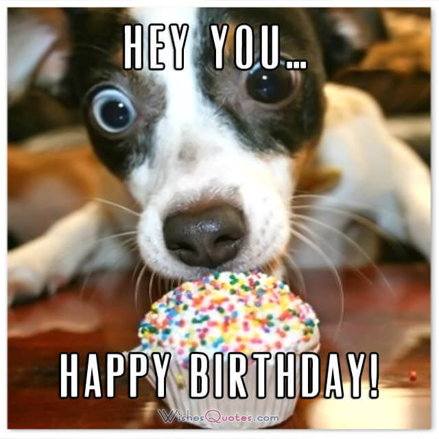 Happy Birthday Friend Funny  Funny Birthday Wishes for Friends and Ideas for Maximum