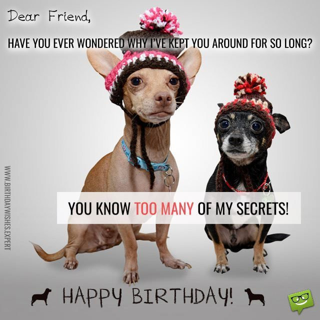 Happy Birthday Friend Funny  Huge List of Funny Birthday Messages Wishes