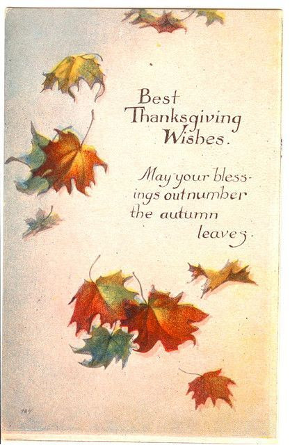 Happy Thanksgiving Blessings Quotes  Best Thanksgiving Wishes s and for