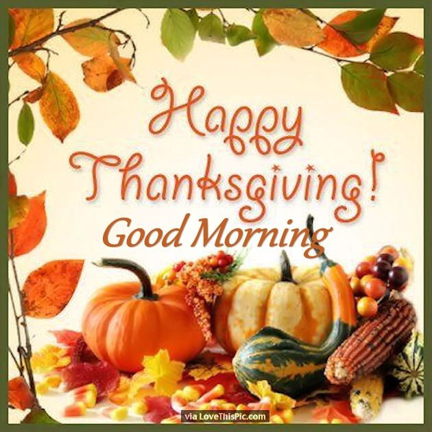 Happy Thanksgiving Pics And Quotes  Festive Happy Thanksgiving Good Morning Quote